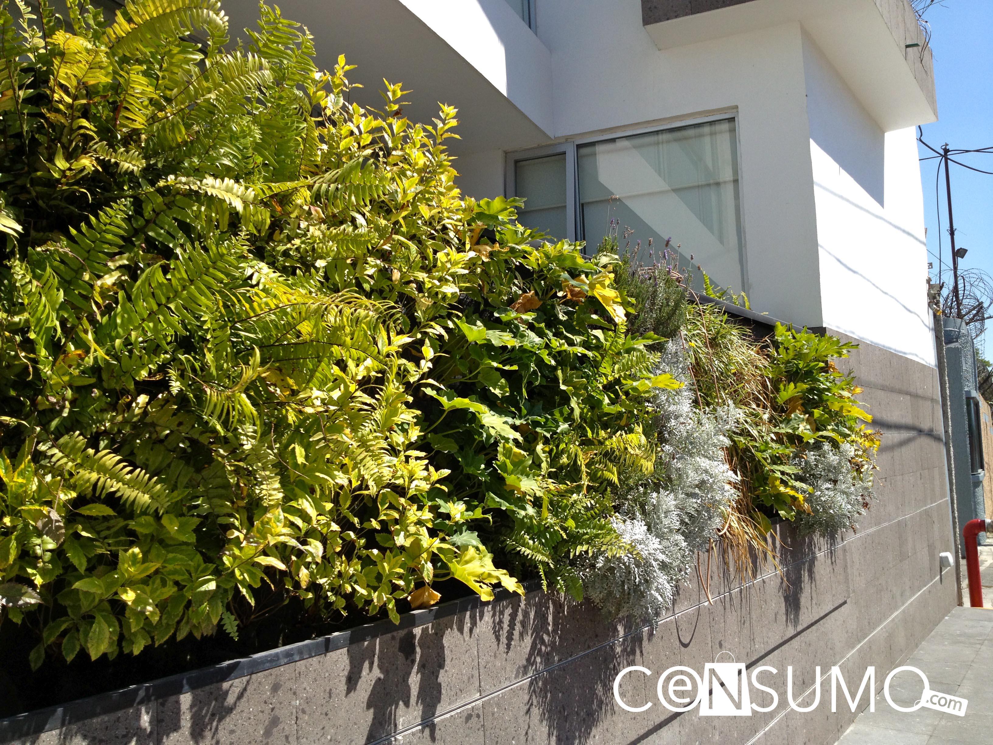 Jardines verticales muros - Muros verdes verticales ...