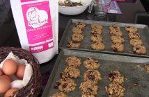 Lacta+, las galletas que ayudan a las mujeres a lactar más