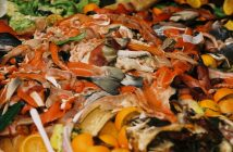 ¿Cómo disminuir el desperdicio de alimentos?